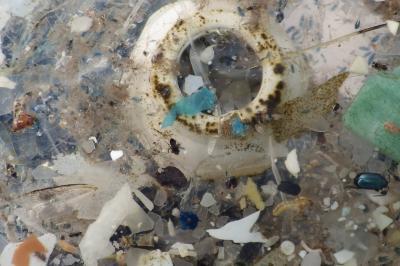 Platisphere continent de plastique